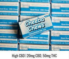 blue-cheeba