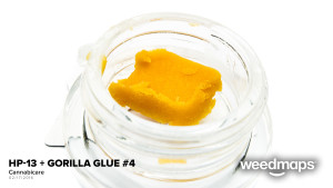 craft-hp13-gorilla-glue-4
