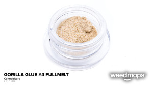 gorilla-glue-4-fullmelt